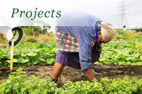 Farm and garden Trust Programmes